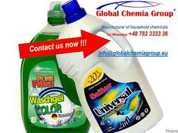 Polish Household chemicals from the manufacturer
