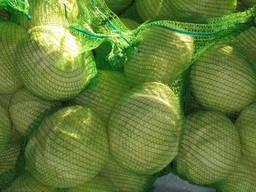 Θα πωλούν λάχανο χονδρεμπόρου Καζακστάν