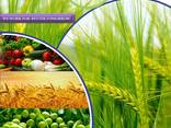 Κατασκευαστής και προμηθευτής φυτοφαρμάκων παγκοσμίως - photo 1
