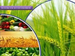 Κατασκευαστής και προμηθευτής φυτοφαρμάκων παγκοσμίως